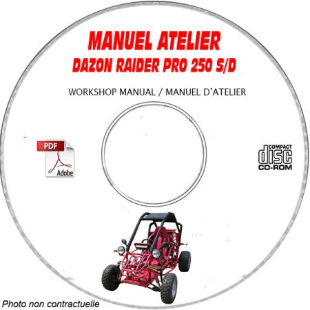 RAIDER 250 S/D -04 Manuel Atelier CDROM DAZON Anglais