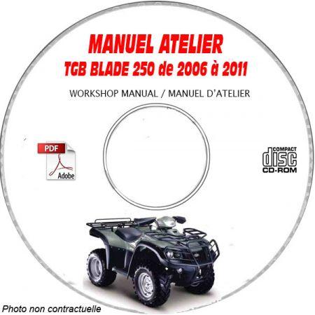 BLADE 250 Manuel Atelier CDROM TGB Anglais
