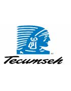 Revues Techniques Agricoles des TECUMSEH