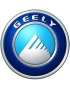 Manuels pour GEELY